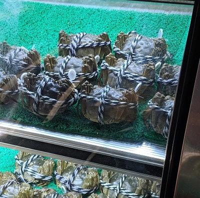 Shanghai PVG Airport Crabs