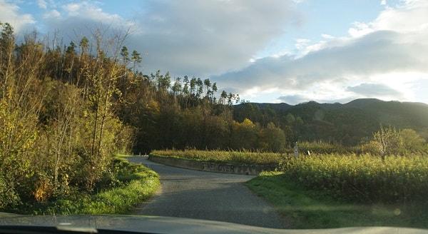 Cinque Terre Roads