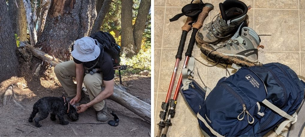 Day Tip Packing - Basics for Hiking with or Without a Dog