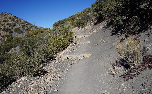 Laguna Meadow Trail