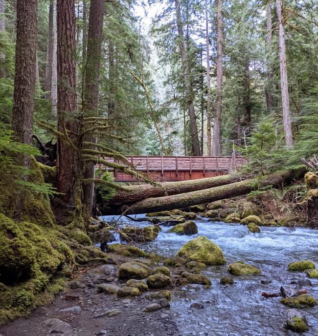 Big Quilcene River - Washington State