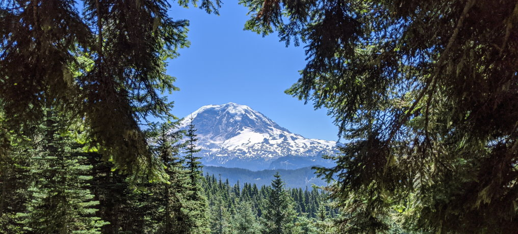 Mount Rainier View - Washington State